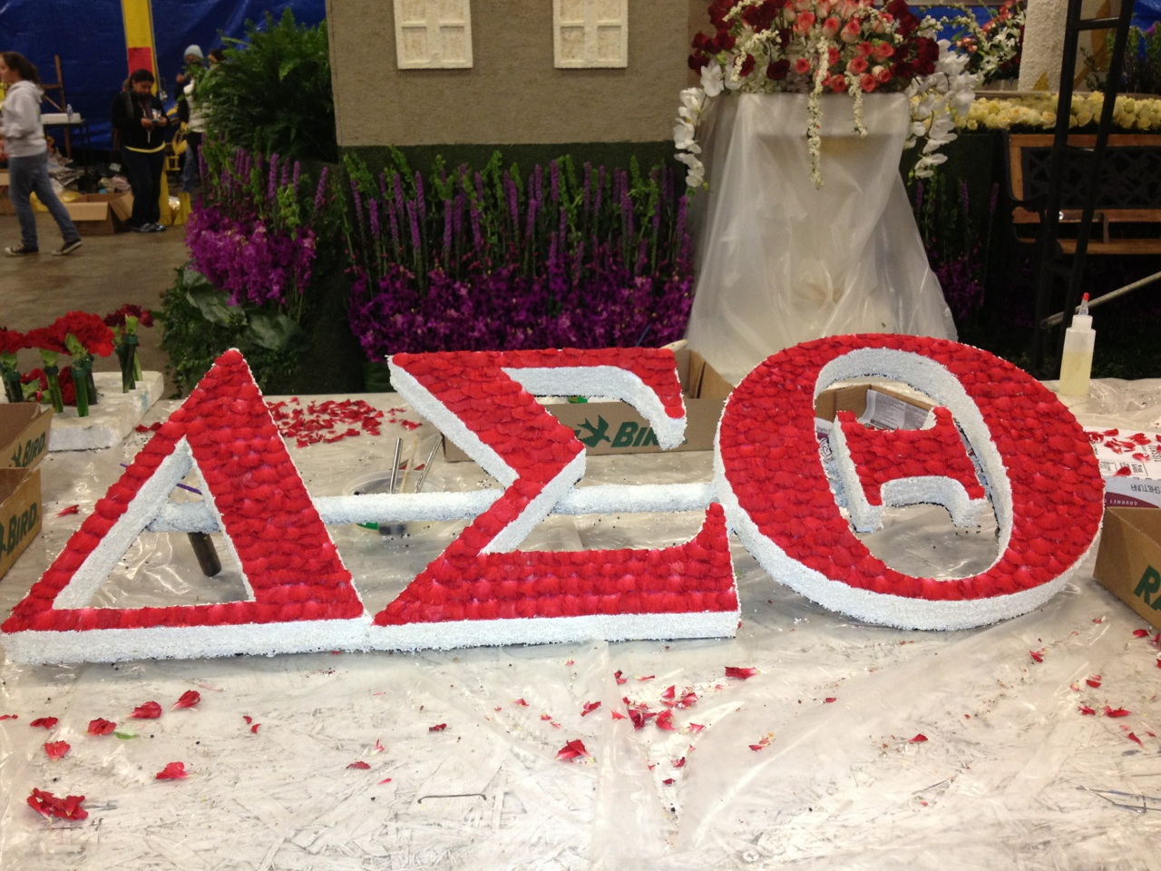 Delta sigma theta reach wingspan pasadena cabuilding the delta sigma theta sorority incorporated tournament of roses float photo credit gail bowens buycottarizona Choice Image